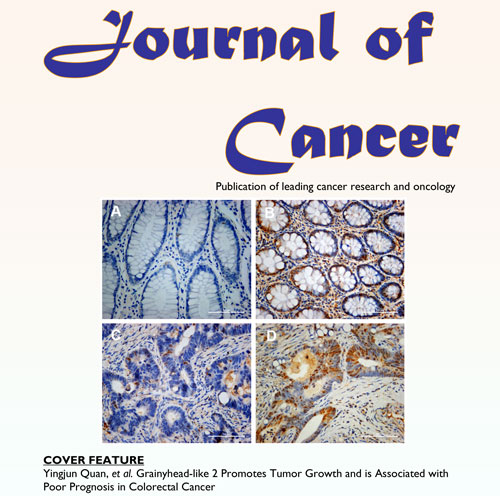 Publikationen von Dr. Schulz: International Journal of Cancer